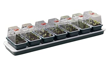Britten U0026 James® Windowsill Nursery 7 In 1 Heated Windowsill Propagator  Set. Seven Individual
