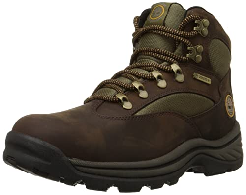Timberland Men's 15130 Chocurua Trail GTX Boot,Brown/Green,7 M