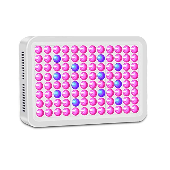 Lightimetunnel 300 watts LED Grow Light