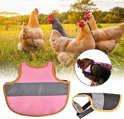 Soporte de protección de plumas para pato de pollo, Bloomma ...