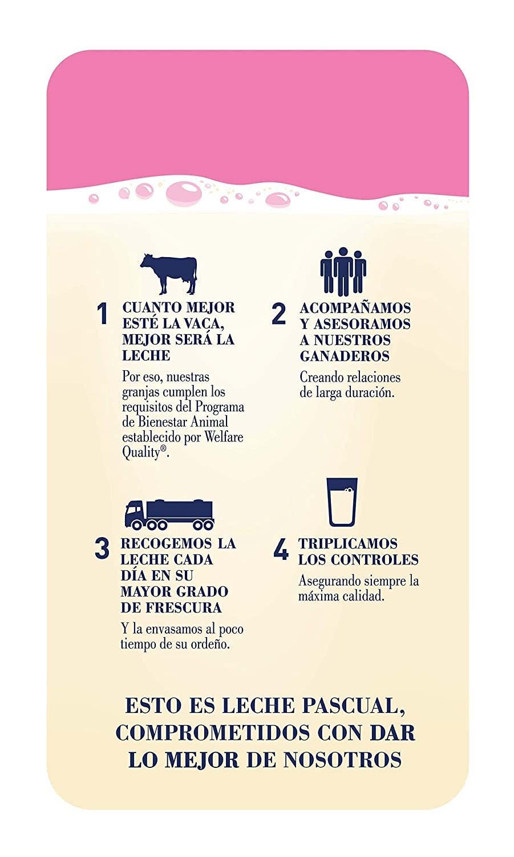 Leche Pascual - Clásica Leche Desnatada - 1 L (Paquete de 6): Amazon.es: Alimentación y bebidas