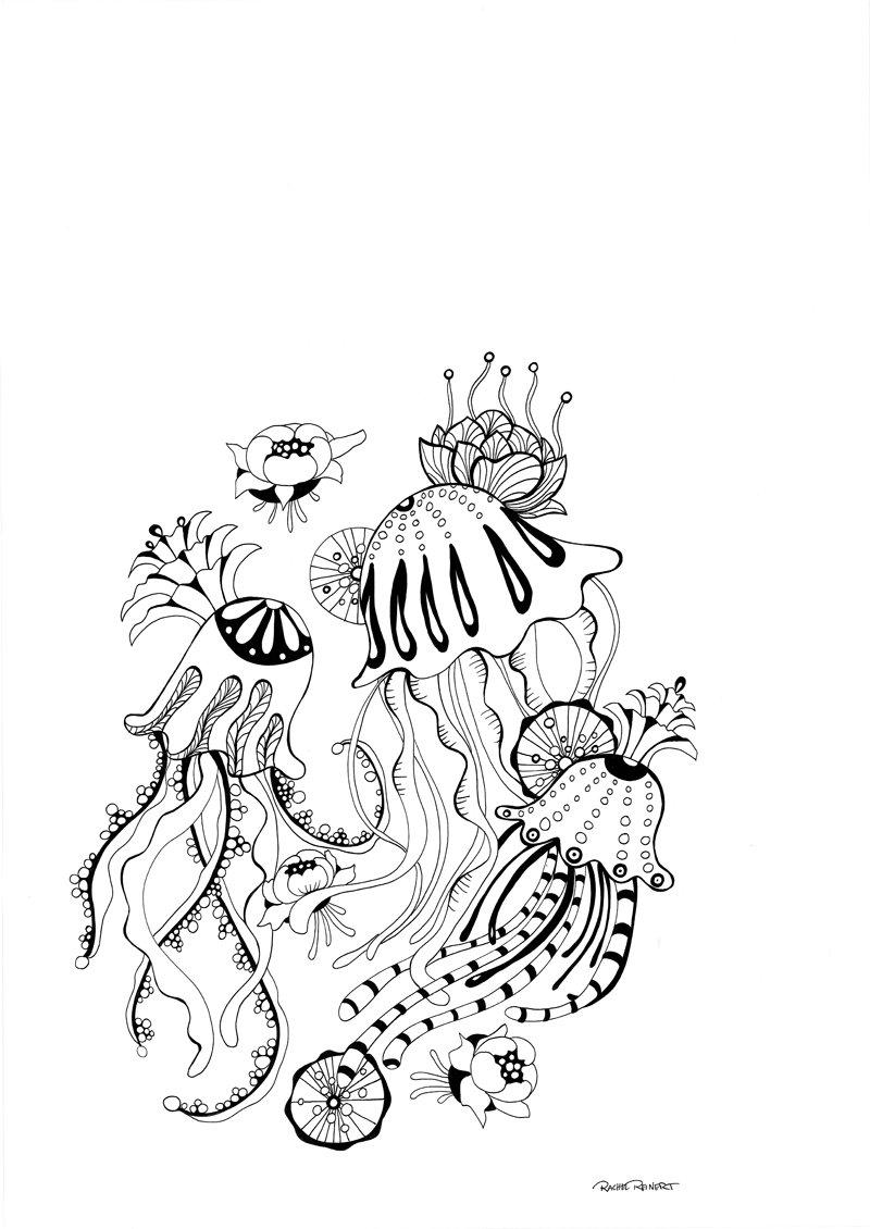 Botanical art coloring book - Botanical Wonderland A Blissful Coloring Retreat Amazon Ca Rachel Reinert Books