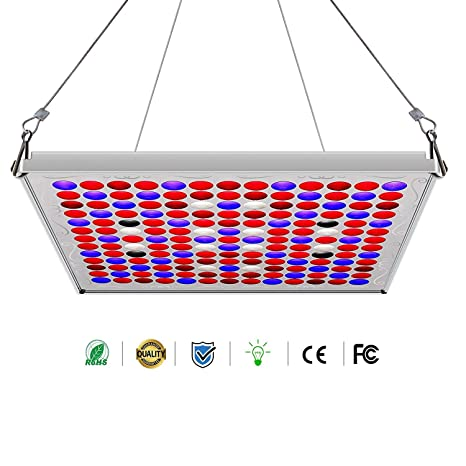 75 W LED luce lampada, abreome Pianta Pianta Pianta Camera da letto ...
