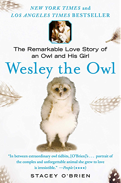 Wesley The Owl The Remarkable Love Story Of An Owl And His Girl Reprint O Brien Stacey Amazon Com