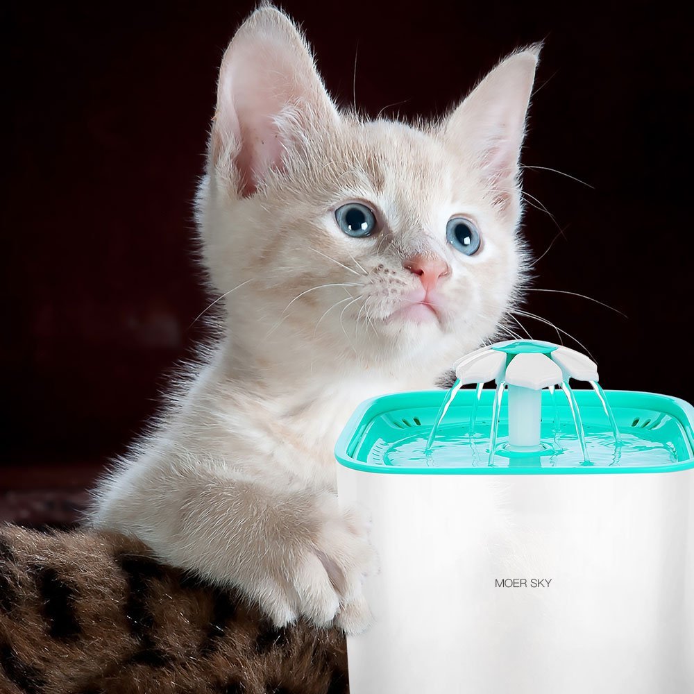 Moer Sky Pet Fountain Cat Water Dispenser-Healthy Hygienic Drinking Fountain 2L Super Quiet Automatic Water Bowl Filter Silicone Mat Dogs, Cats, Birds Small Animals (Pet Fountain) by Moer Sky (Image #9)