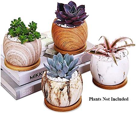 AppyHut Succulent Plant Pots 7.7 inch Round Marbling Ceramic Succulent  Planter Cactus Pot Planter Pots Flower Pot Vase Container Decorative Pots  for