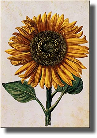 Sunflower Picture Made on Stretched Canvas, Wall Art Decor Ready to Hang!