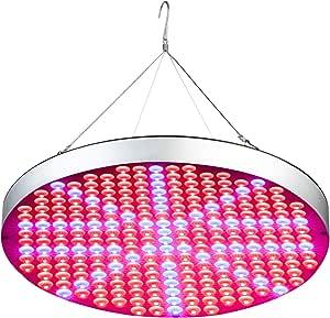 shengsite Grow Light, 50 W LED luz de crecimiento de plantas en interior siembra con espectro para rojo y azul, crecimiento y floración