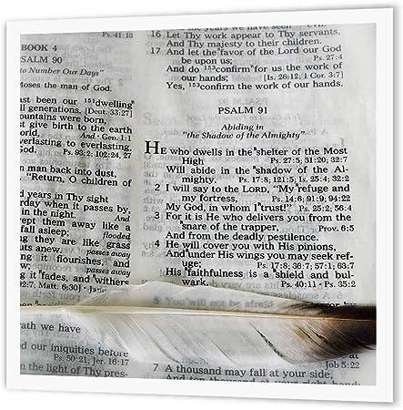 3drose Fotografia De Una Biblia Abierta Al Salmo 91 Y Marcada Con Una Pluma Grande Transferencia De Calor Con Plancha Multicolor 8 Inch X 8 Inch Amazon Es Hogar
