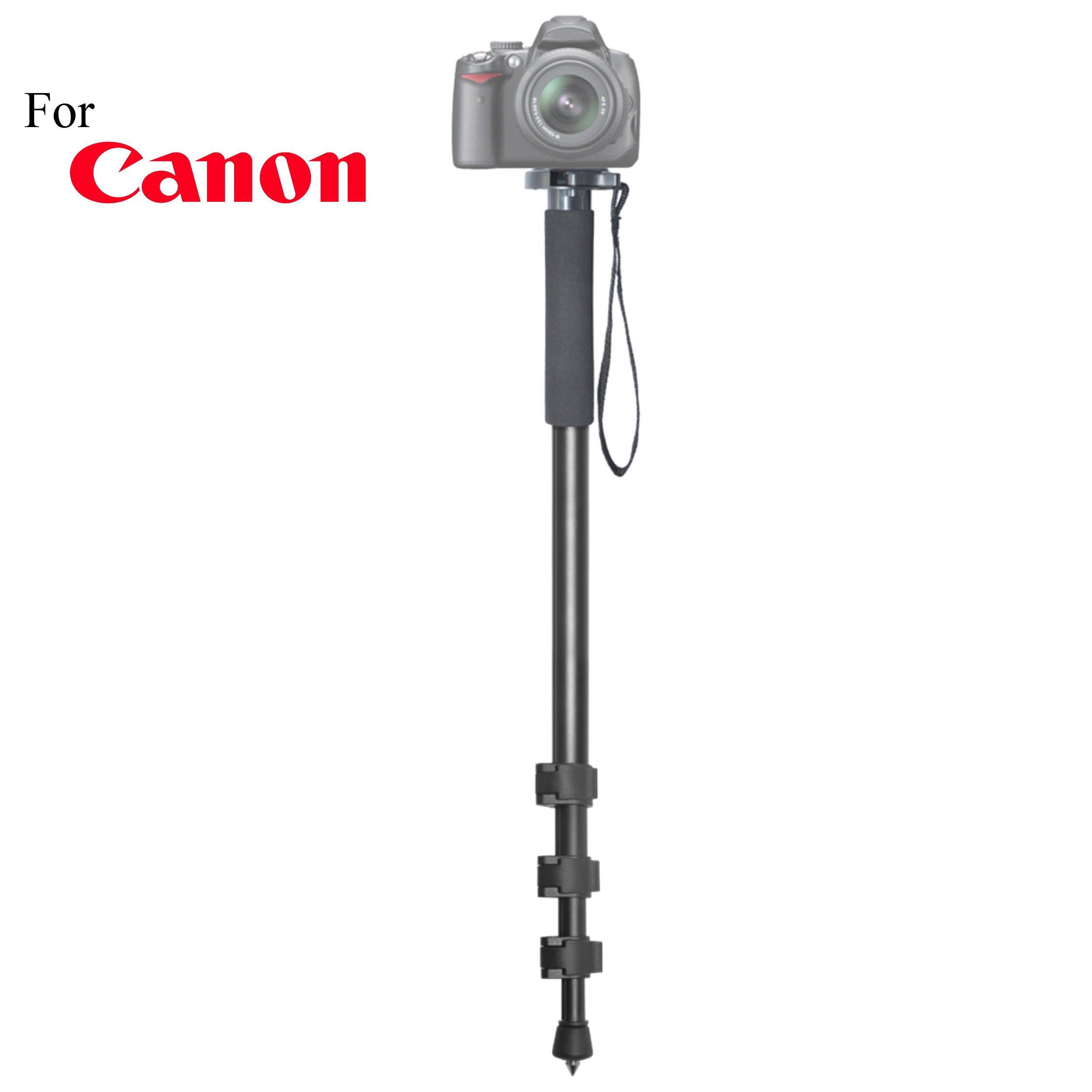Versatile 72'' Monopod Camera Stick + Quick Release for Canon EOS Kiss Digital, EOS Kiss Digital N, EOS Kiss Digital X, EOS Kiss X2, EOS Kiss X3, EOS Kiss X4 Cameras: Collapsible Mono pod, Mono-pod