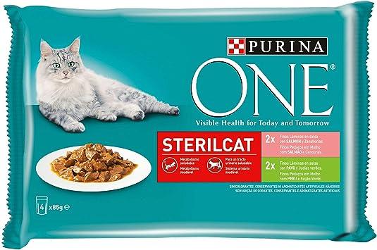 Purina ONE comida húmeda para gato esterilizados filetes en salsa ...
