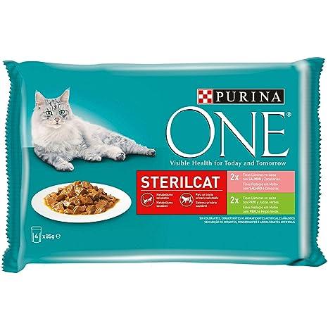 Purina ONE comida húmeda para gato esterilizados filetes en salsa con variedad de salmón y pavo 12 x [4 x 85 g]