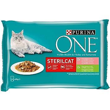 Purina ONE comida húmeda para gato esterilizados filetes en salsa con variedad de salmón y pavo 12 x [4 x 85 g]: Amazon.es: Productos para mascotas