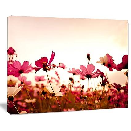 Design Art Cosmos Fiori Su Sfondo Rosa Moderno Floreale Opera D