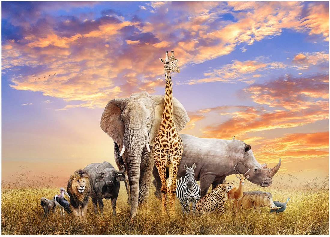YOUNGTION 1000 Piece Puzzles for Adults Teen Classic Jigsaw Puzzle Wild Animals for Family Home-20