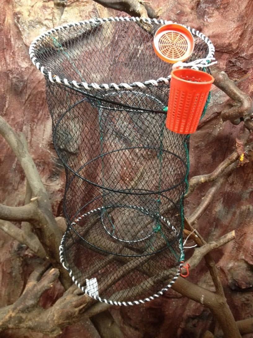 Top Preise! Fischreuse,Aalreuse,Krebsreuse,Köderfischreuse,Reuse mit Köderdose