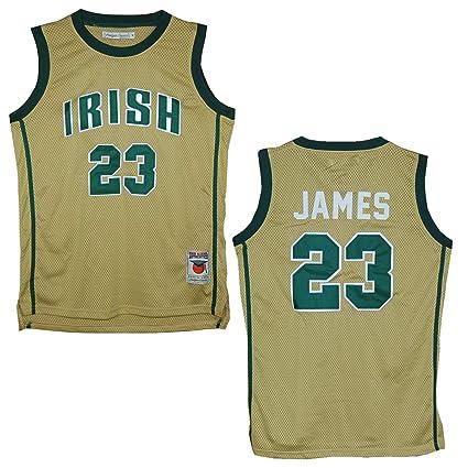 98abecb27da2 ... swingman men jersey green 6ebc6 order headgear st. vincent st. mary  fighting irish lebron james gold high school jersey ...