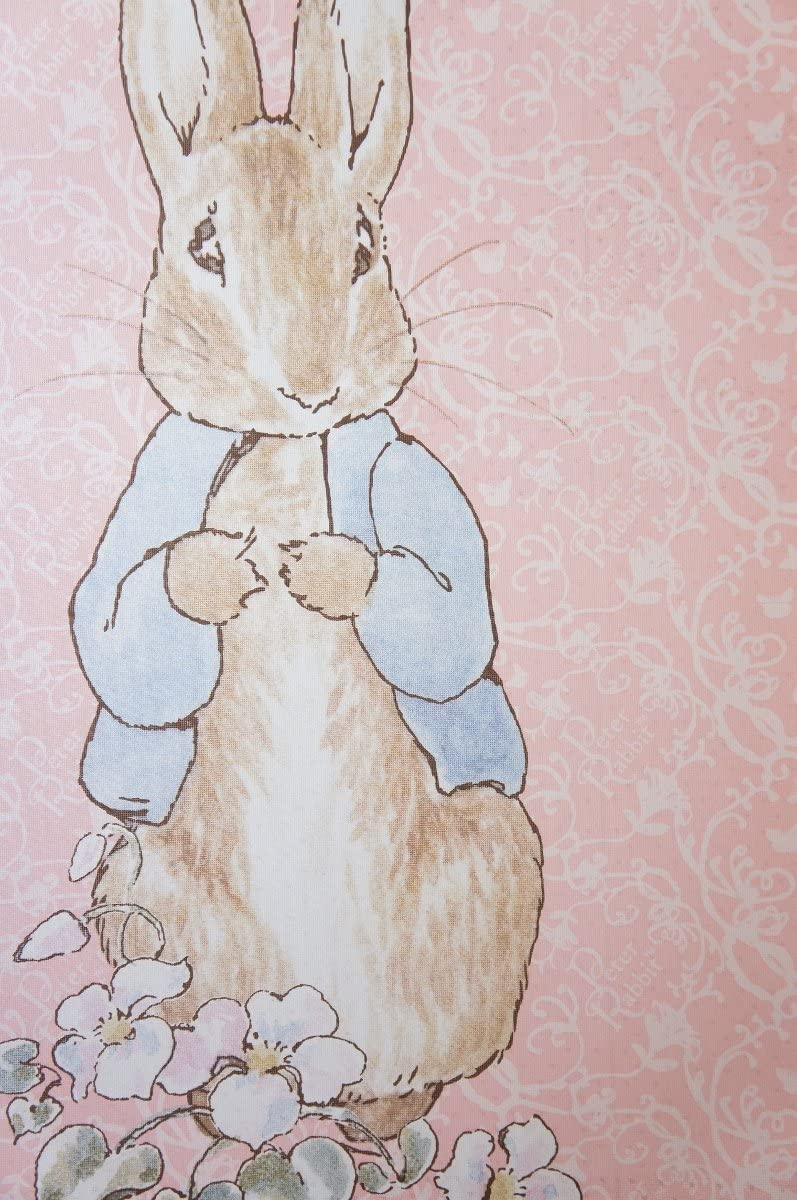 Aswan Cosmos Peter Rabbit Noren Curtain Tapestry Pink 85x150cm from Japan