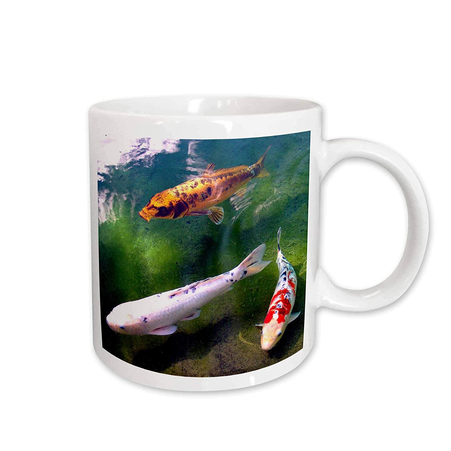 Buy 3drose Chinese Koi Carp Fish Mug 11 Ounce Online At Low Prices In India Amazon In