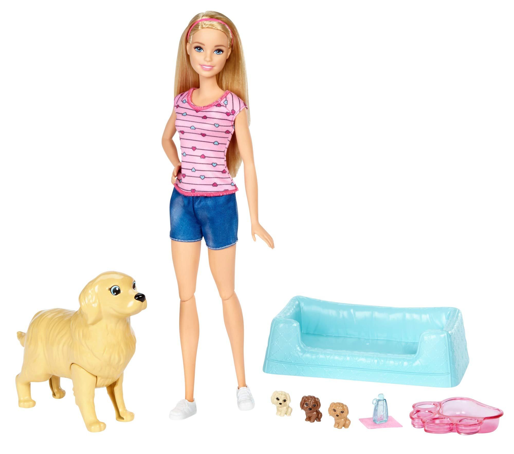 Barbie y sus perritos sorpresa, muñeca con accesorios (Mattel FDD43) product image