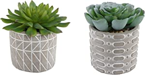 Flora Bunda Mid Century Artificial Plants Cactus Set of 2 Fake Succulent in 3