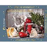 nanook Hansepet Adventskalender für Nager - Hamster - Hasen - Kaninchen - 140 g Gebäck - 42 x 30 cm