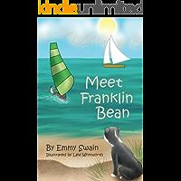 Meet Franklin Bean (Franklin Bean Superhero Series Book 1)