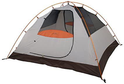 ALPS Mountaineering Lynx 4 Person Tent  sc 1 st  Amazon.com & Amazon.com : ALPS Mountaineering Lynx 4 Person Tent : Family Tents ...
