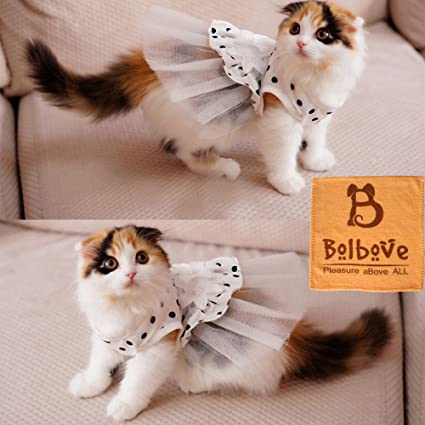 iu0027Pet® Princess Floral Cat Party Bridal Wedding Dress Small Dog Flower Tutu Ball & Amazon.com : iu0027Pet® Princess Floral Cat Party Bridal Wedding Dress ...