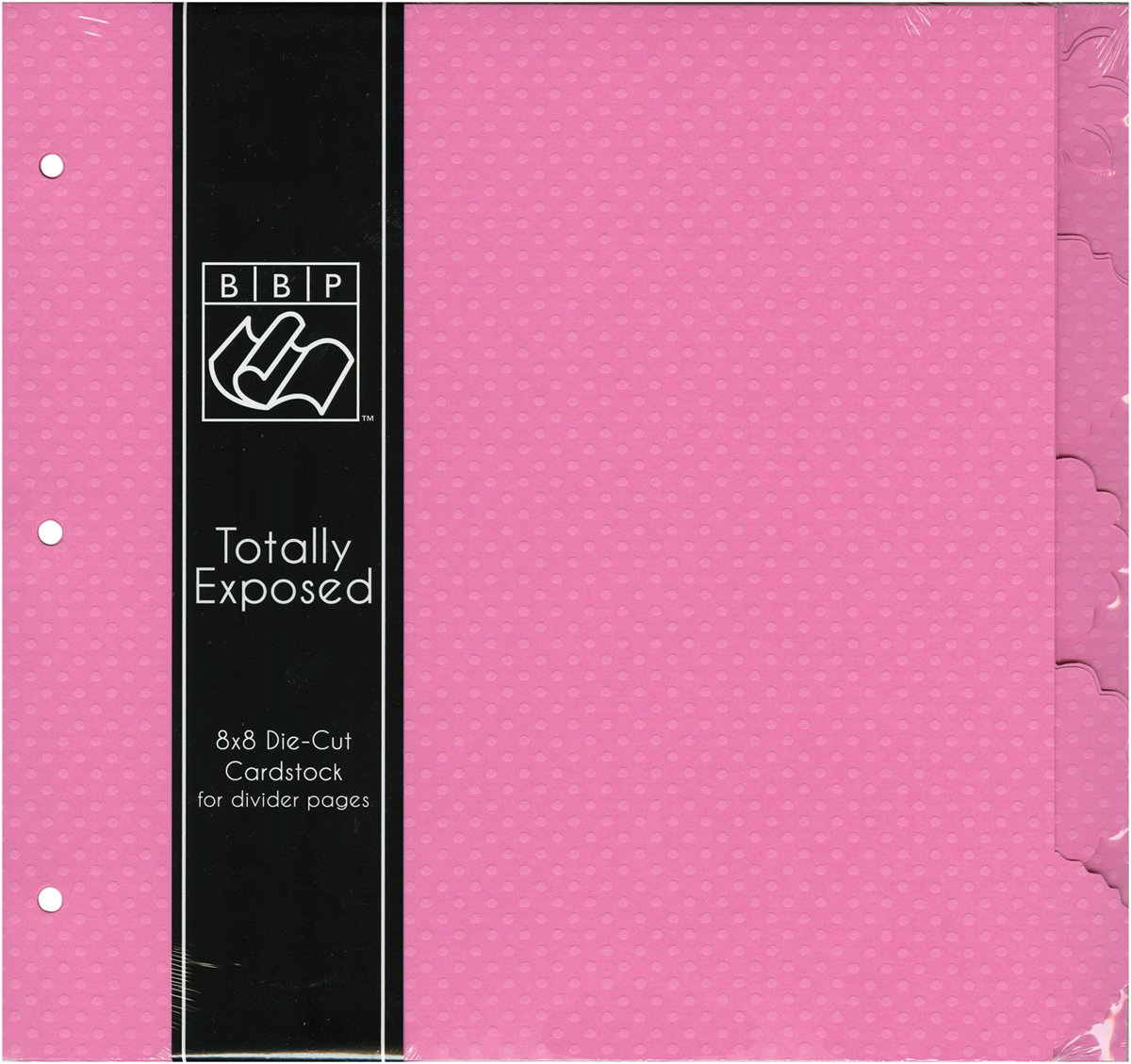 Bazzill Basics - 8 x 8 Cardstock Divider Pages with Tabs - Set of 5 - Slipper by Bazzill Basics (Image #1)