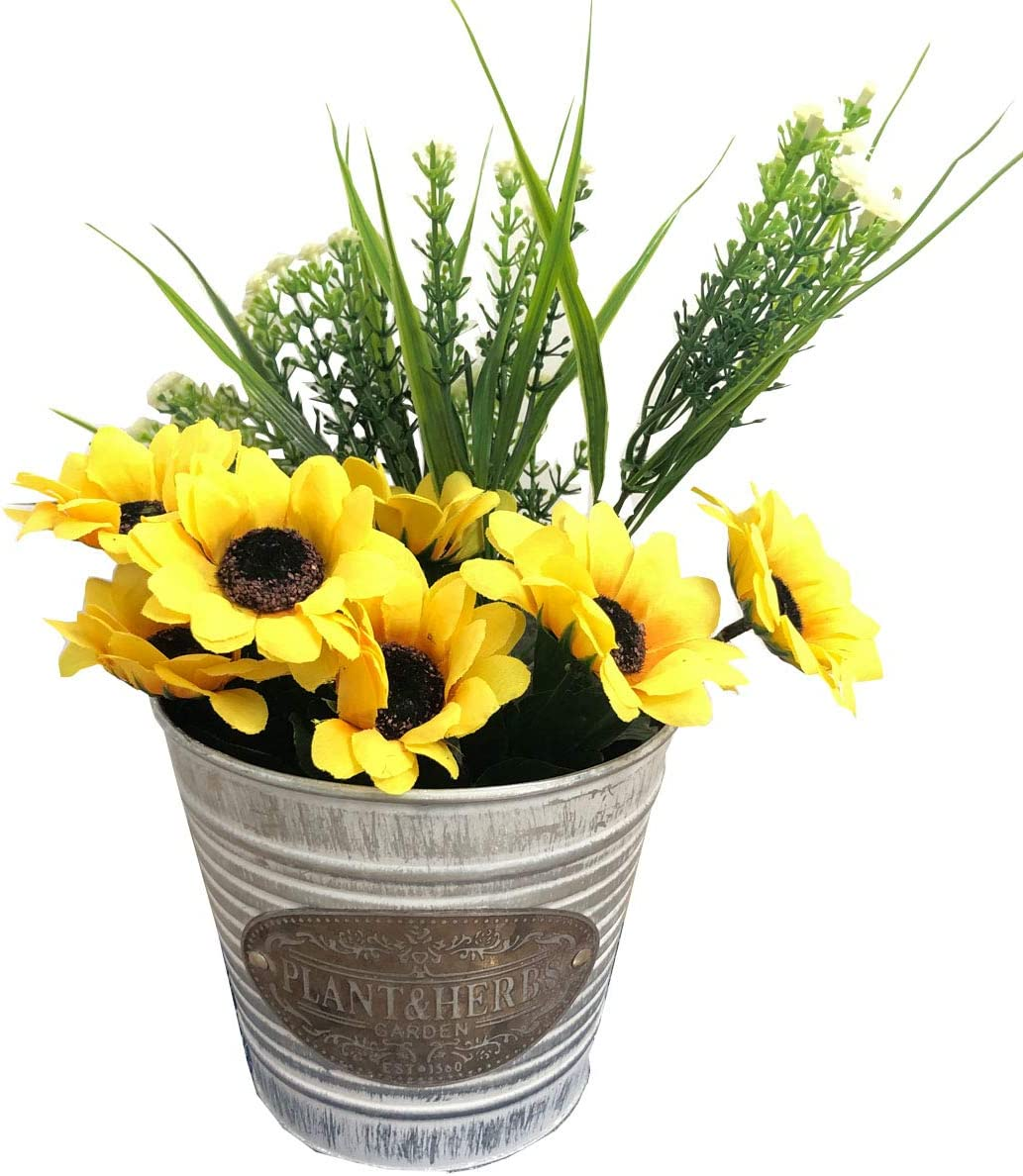 Ashley ZC Metal Decorative Bucket for Party Favors and Succulents, Round Garden planters - Metal Handle with Wood Detail