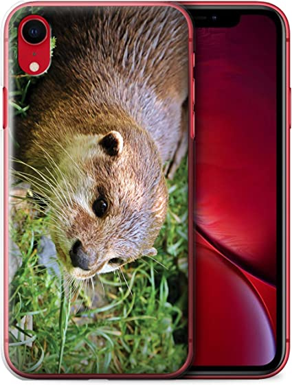 coque iphone 7 loutre