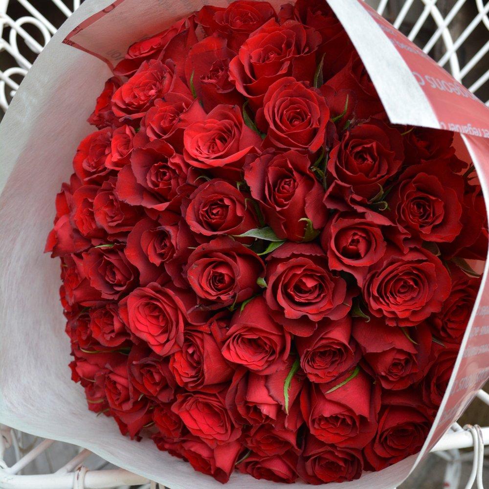 〔エルフルール〕バラの花束 60本 カラー:レッド 結婚記念日 プレゼント 薔薇 誕生日祝い 贈り物 還暦祝い クリスマスプレゼント 彼女 B00GWI467M