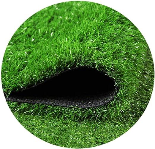 WJ Simulación Césped Artificial Césped Jardín de Infancia Alfombra Falsa Planta Verde Exterior Plástico Techo Decoración (Color : T 1cm, Size : 2 * 4m): Amazon.es: Jardín