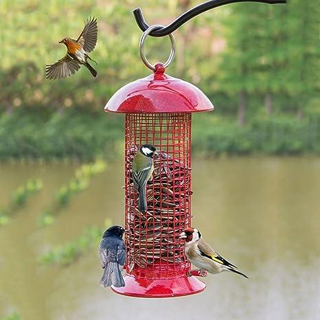 Al Aire Libre Pájaro Colibrí Alimentador Con Metal Techo Perfecto Para Jardín Decoración Y Observación De Aves Para El Amante De Las Aves. Cacoffay,Pink: Amazon.es: Deportes y aire libre