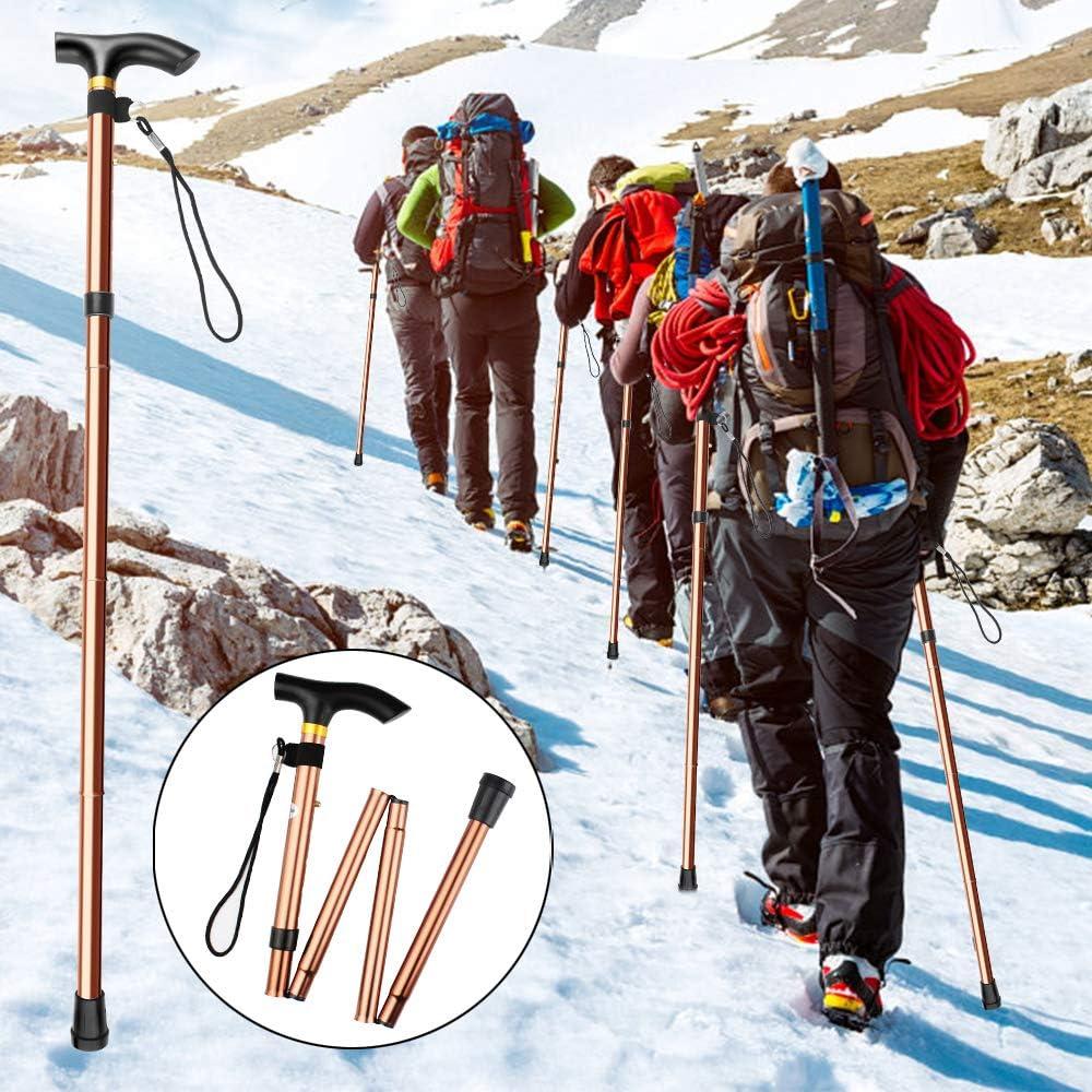Aide /à la mobilit/é Voyage Camping Canne Extensible avec Manche de ABS Chudian 2pcs Canne de Marche Pliante Canne r/églable en Aluminium ultral/éger avec Base antid/érapant