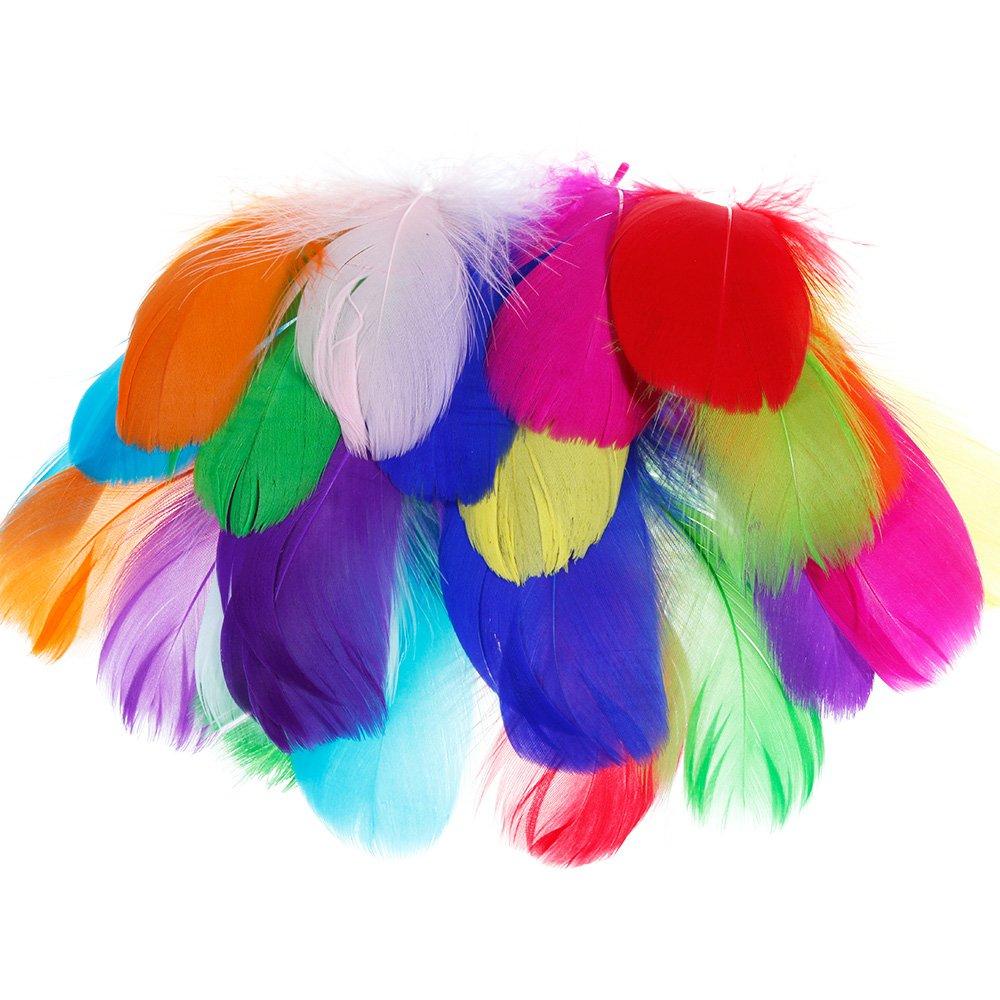f/ête danniversaire denfant Attrape-r/êves Masques de d/écoration Costume Faburo 500pcs Plumes Color/ées Naturel Multicolore Plume D/écoration pour DIY Arts Crafts Mariage Chapeaux