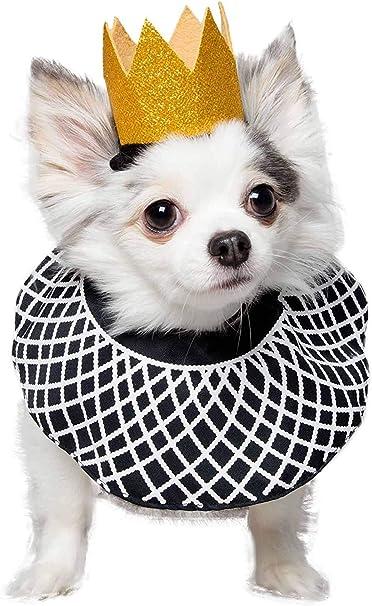 RBG Dog Bandana
