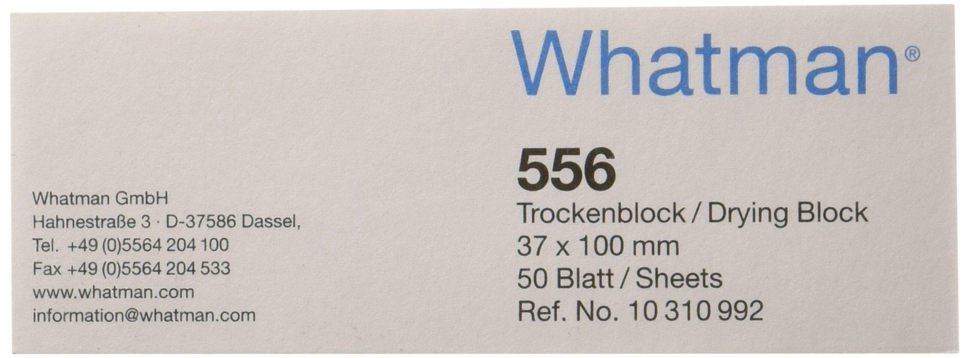 GE Whatman 10310992 Drying Pad, Grade 556, 37mm Width x 100mm Length (Pack of 100)