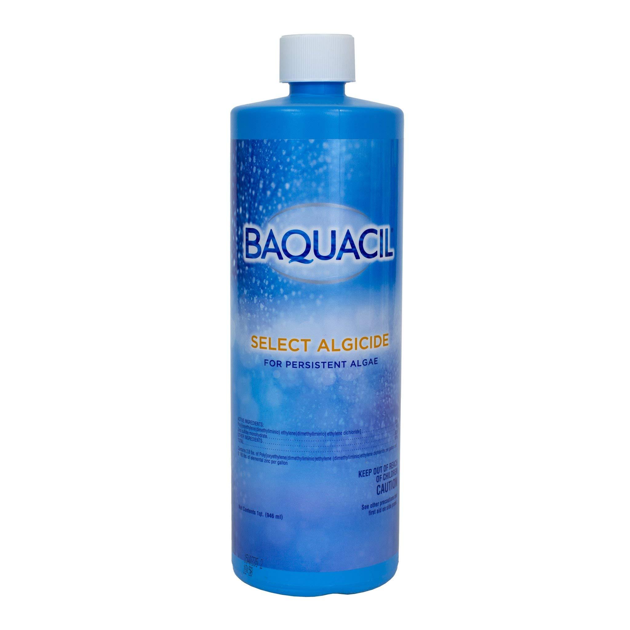 Baquacil 84406 Select Swimming Pool Chemical, Algaecide, Clear by Baquacil