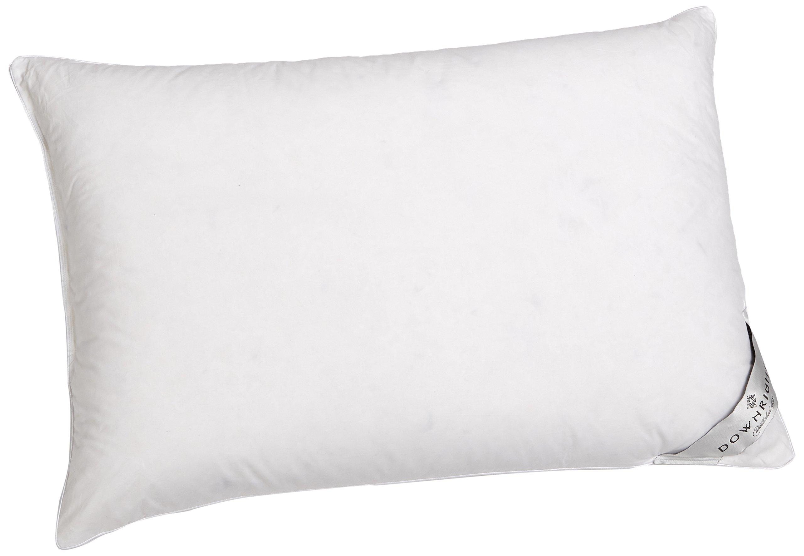 Downright 360 Thread Count 16 oz Logana Down Pillow, 20'' x 26''