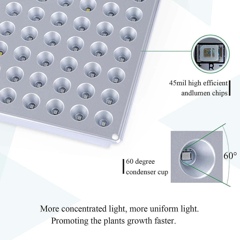 Amazon.com : Lightimetunnel Led Grow Light, Indoor Plants Growing ...