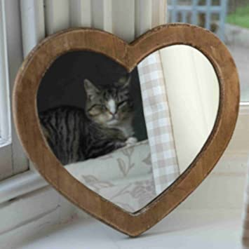 Image result for cats and hearts shaped bed