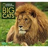 National Geographic Big Cats 2017 Wall Calendar