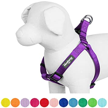 Blueberry Pet Step-in Clic Dog Harness, Chest Girth 42cm-54cm ...