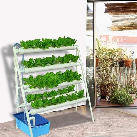 hidropónico Kit De Cultivo Hidropnico Crecimiento Cultivo Interior 4