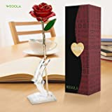 Love Forever Long Stem Gold Foil Trim Red Rose Flower with Transparent Stand, Best Gift for Valentines Day, Mothers Day, Anniversary, Birthday Gift, Treating Yourself, Galentine's Day ( Red )