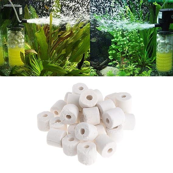 Tandou Acuario Anillos Cerámicos Medios Biológicos Bacteria Fish Tank Estanque Filtro Canister: Amazon.es: Productos para mascotas