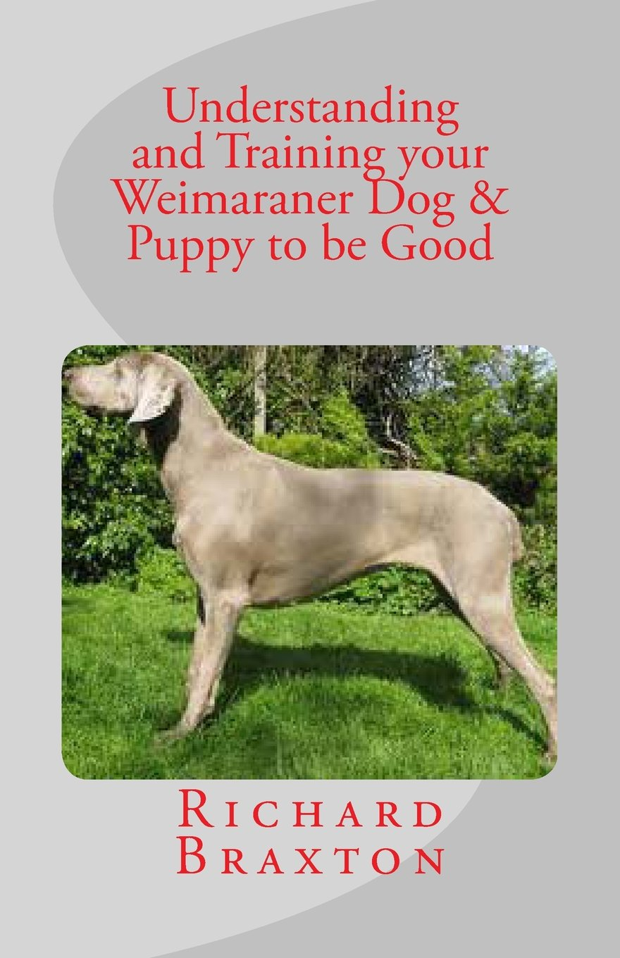 Understanding and training your weimaraner dog puppy to be good understanding and training your weimaraner dog puppy to be good richard braxton 9781475067545 amazon books nvjuhfo Image collections