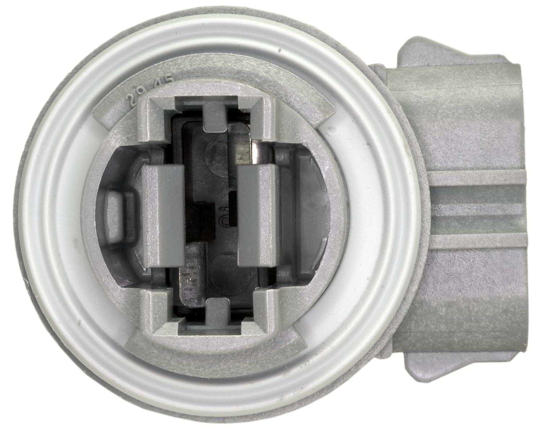 WVE by NTK 1P1329 Back Up Light Socket